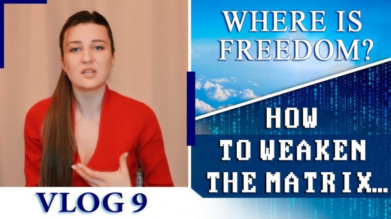 Where is Freedom? How to weaken the system of the animal mind. Vlog 9 | My Way to Life | ALLATRA