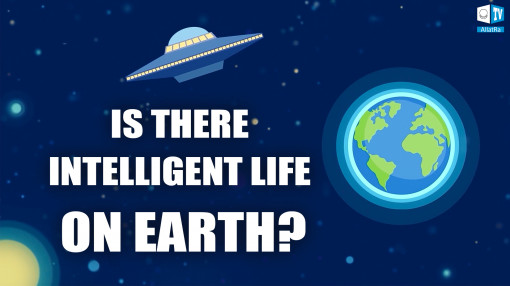 "Is there intelligent life on Earth? Excerpt from the conference ""Creative Society. United we can """