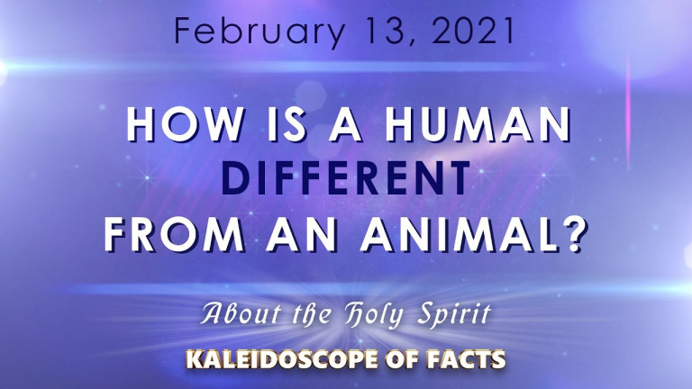 How is a human different from an animal?