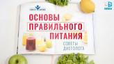 Основы правильного питания – советы диетолога | Навигатор здоровья